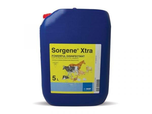 Sorgene-Xtra
